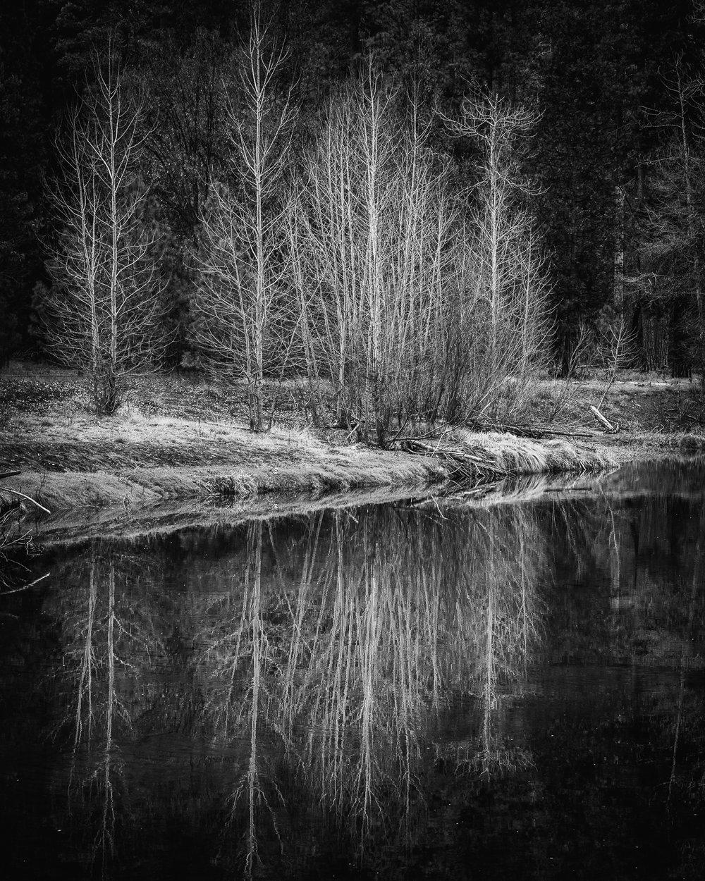 Yosemite-19.jpg