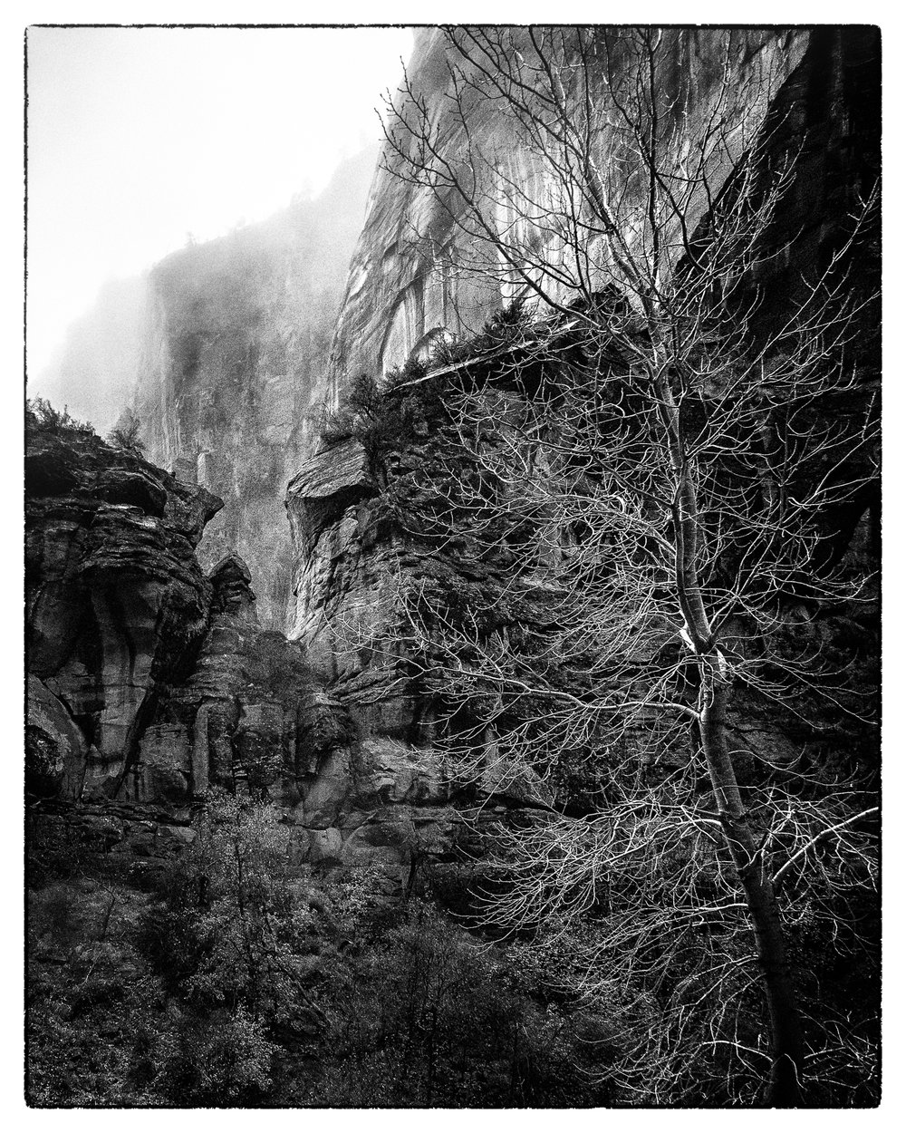 Yosemite-Zion-18.jpg