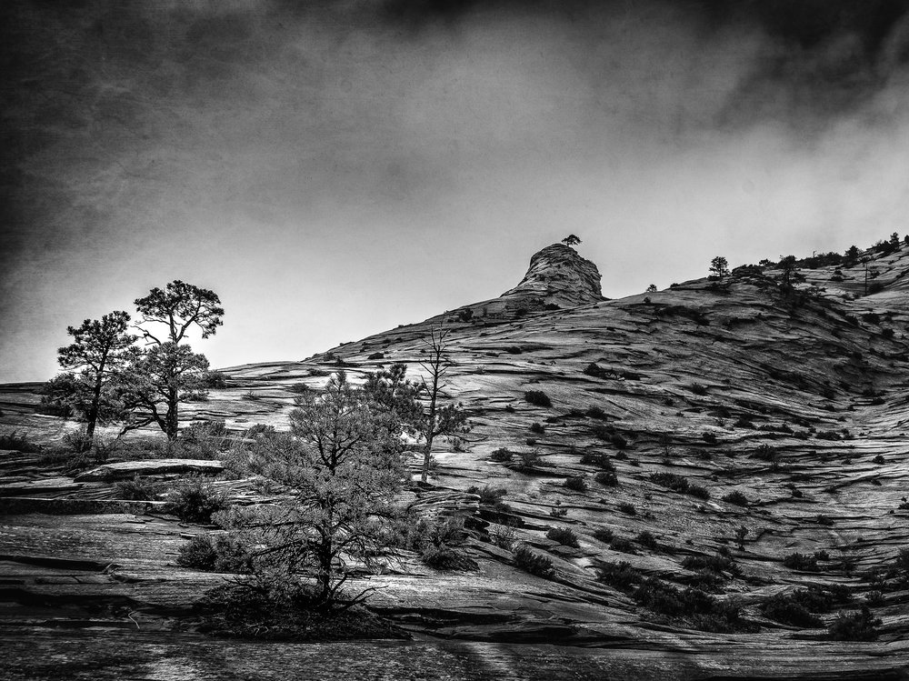 Yosemite-Zion-30.jpg