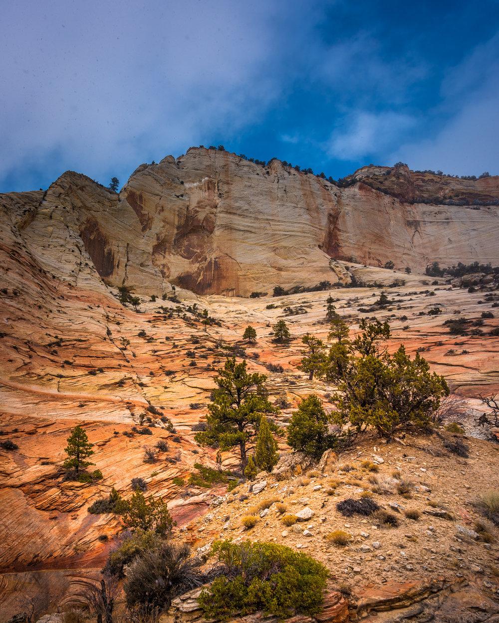 Yosemite-Zion-32.jpg