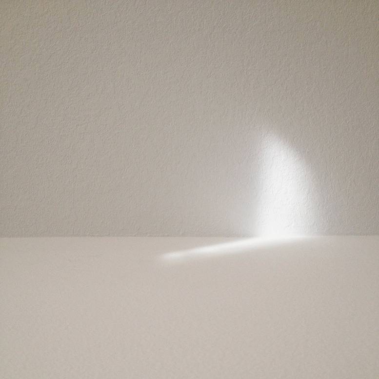 self-ceiling-light-web.jpg