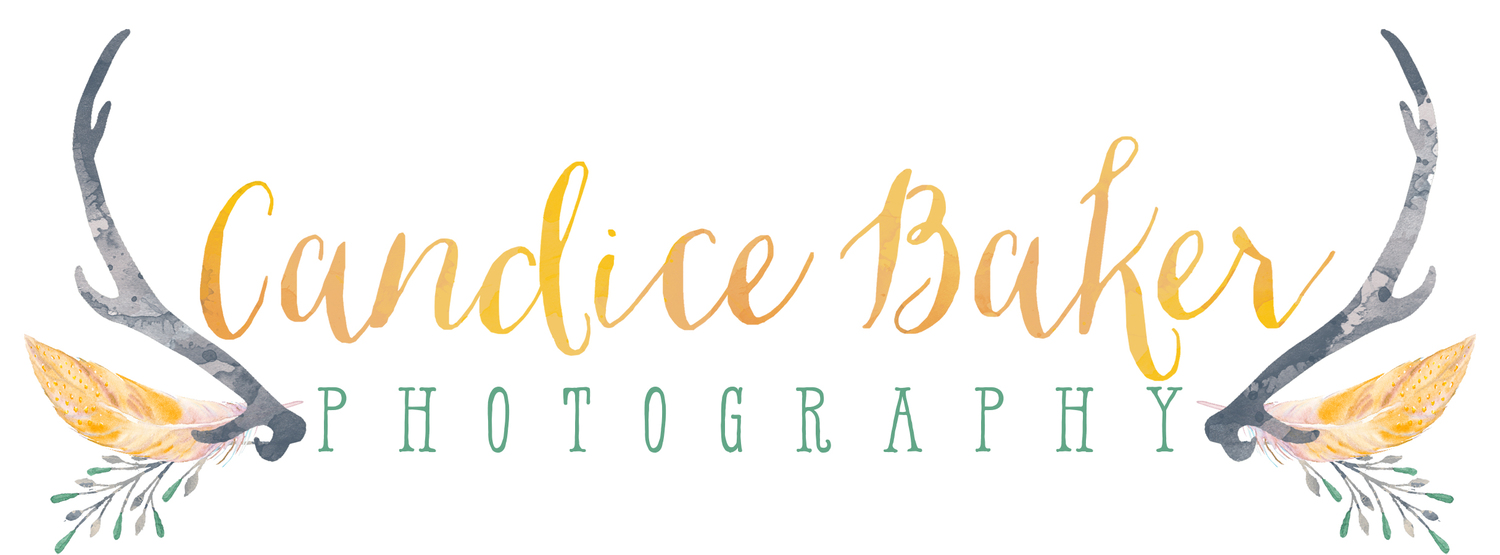 Candice Baker Photography