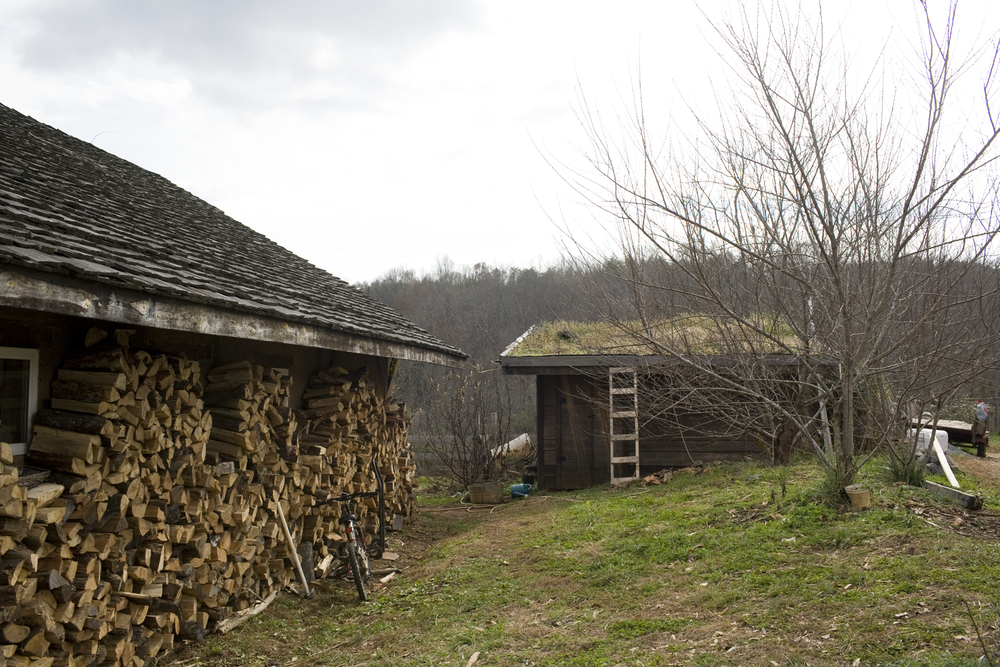 20111122_RAFI_Puffed_Grain_189s.jpg