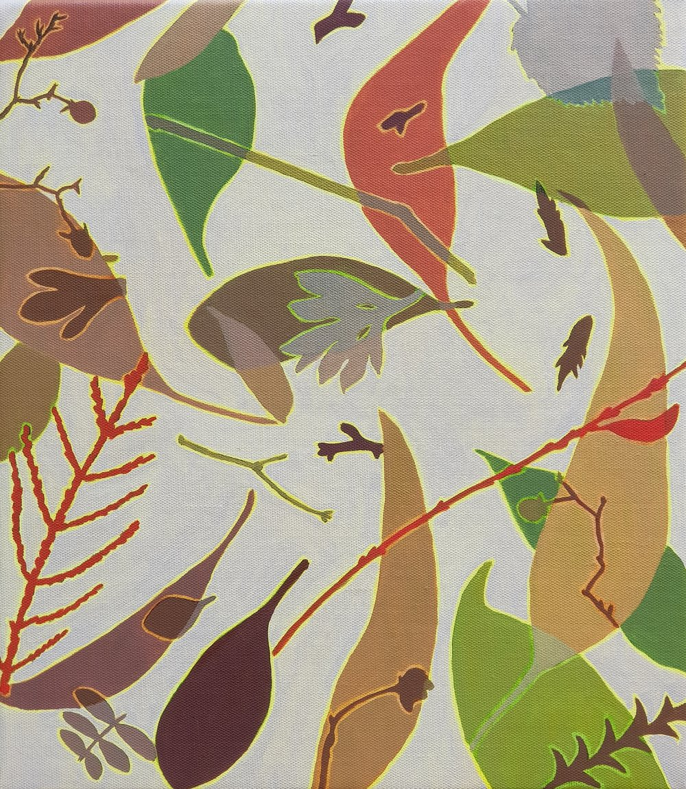 Leaf Litter 1  41 x 36 cm   oil on linen
