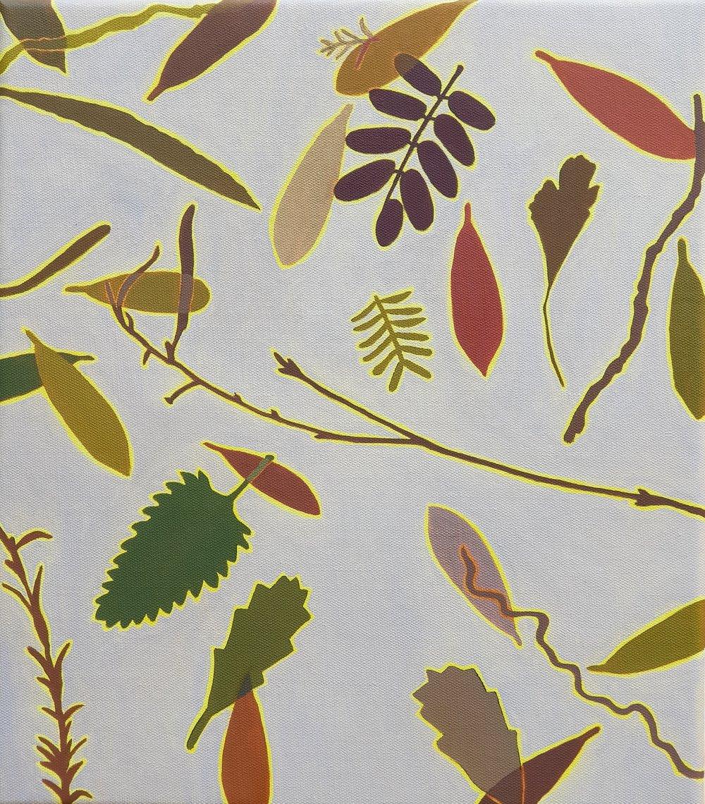 Leaf Litter 2  41 x 36 cm   oil on linen