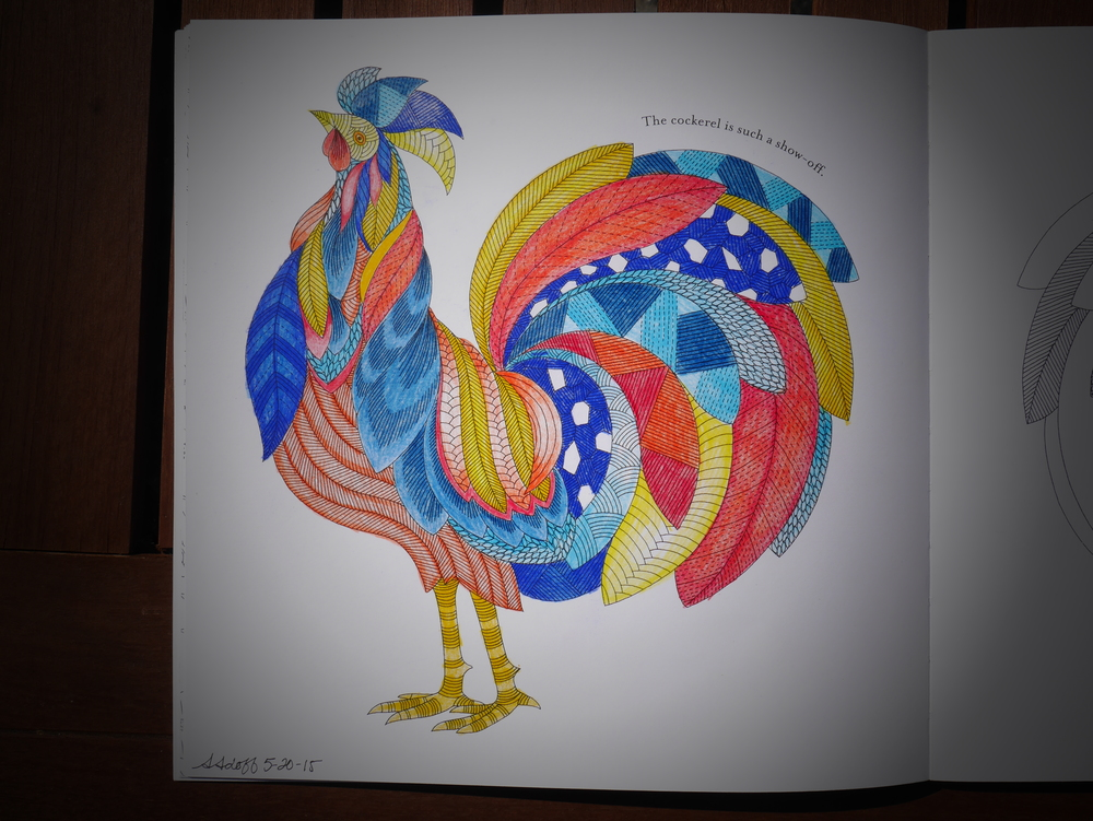 Coloring page from the Animal Kingdom coloring book