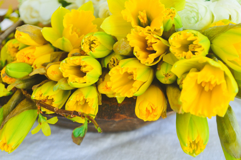Easter Pics-Easter Pics-0004.jpg