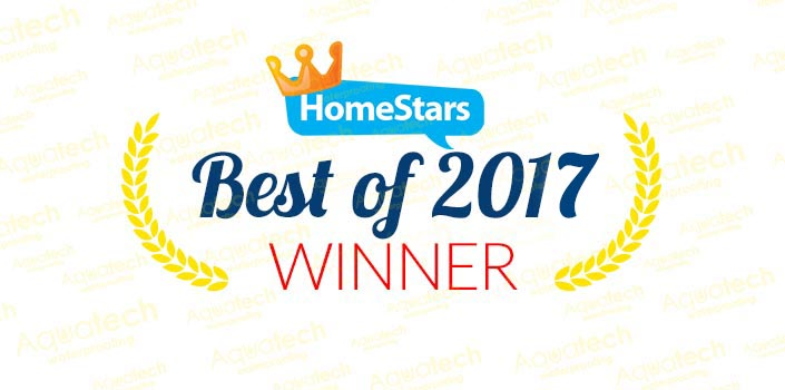 homestars-best-of-2017-winner.jpg