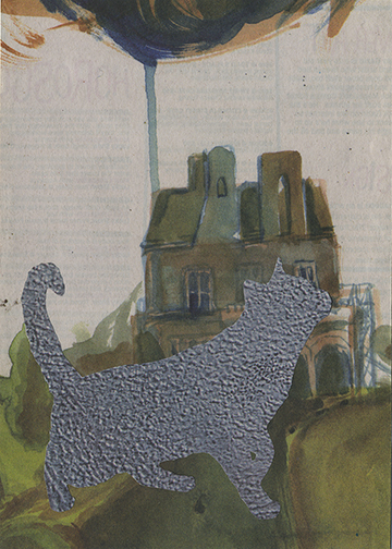 cat_house_blueish.jpg