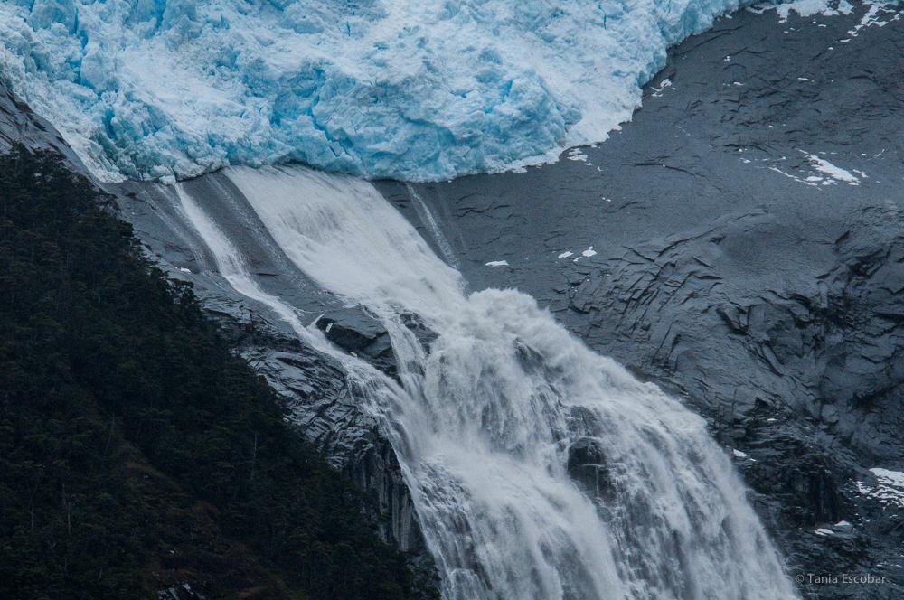 01TEO_990-Canal_Beagle_(Glaciar Romanche).jpg
