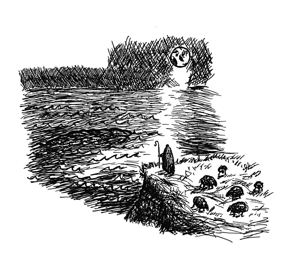 Sea doodle.png