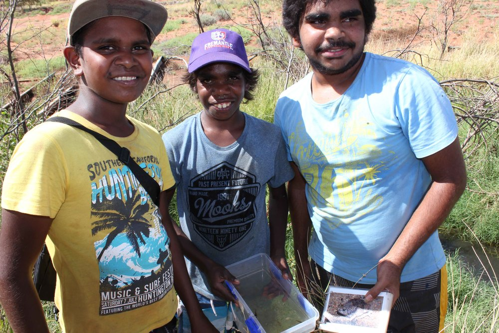 Justin, Ullah and JB at Rawa soak collecting a tadpole sample and trying to identify the frog species using the reference book