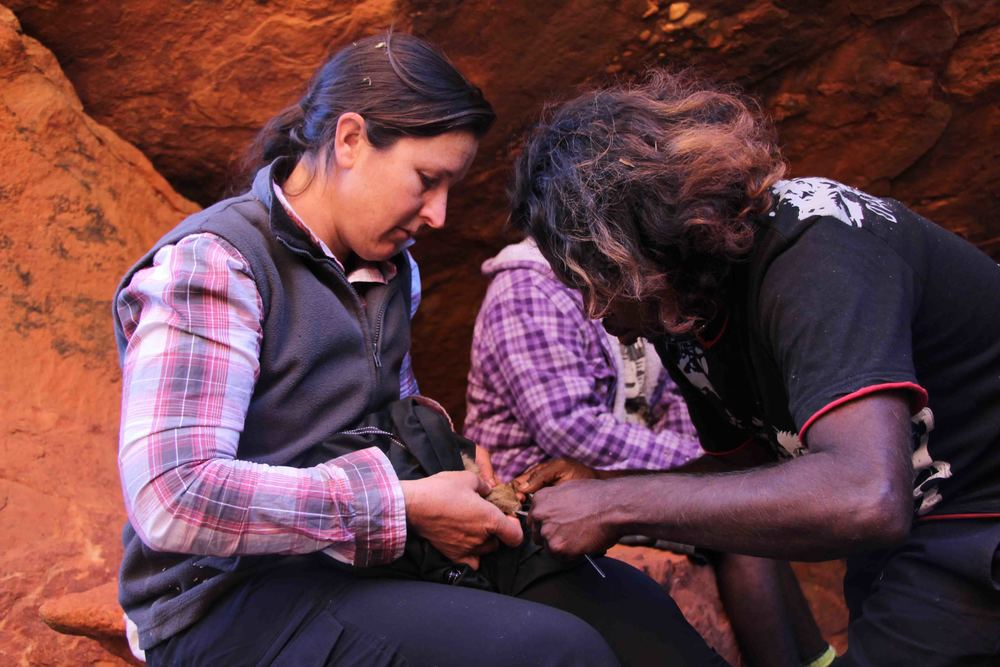 Jigalong rangers working with WA Department of Parks and Wildlife to monitor and protect the endangered Black-flanked rock-wallaby