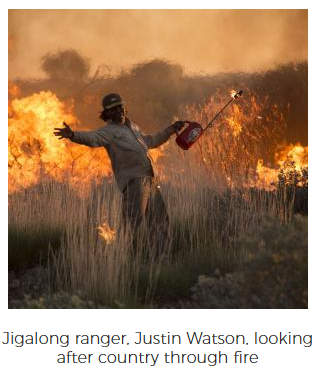 Jigalong ranger, Justin Watson, looking after country through fire