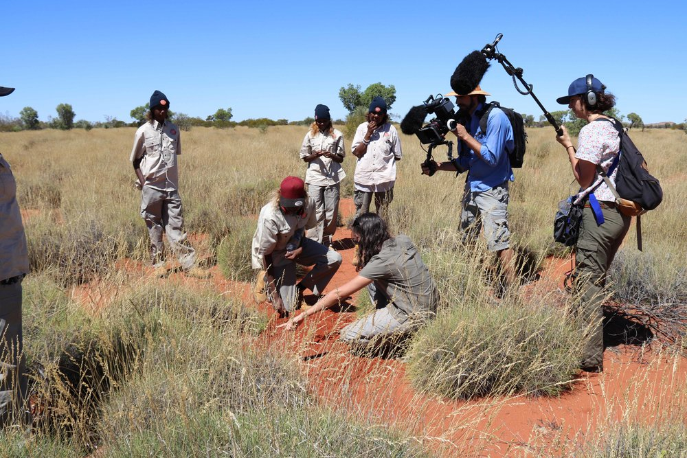 Parnngurr ranger, Lee Robinson, explaining about mankarr (bilbies) to Rachel (NITV)