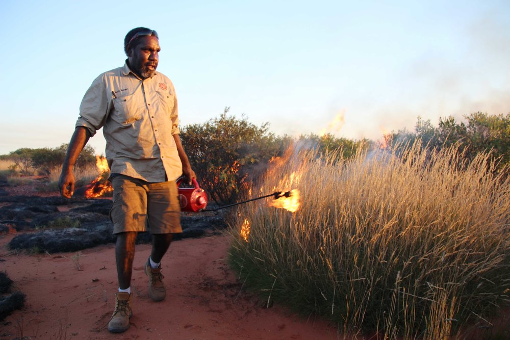 Jigalong ranger putting in trackside burns near Pinpi