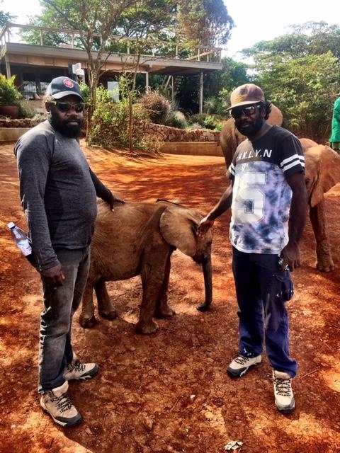 Day 8 Elephant 1.jpg