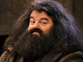 Hagrid hair