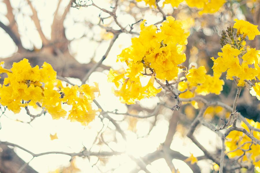 march-16-2012-61 copy-w
