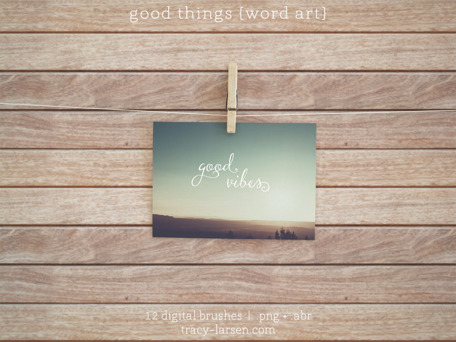 digital good things {word art} photoshop stamps + brushes for project life scrapbooking ==> tracy-larsen.com/blog