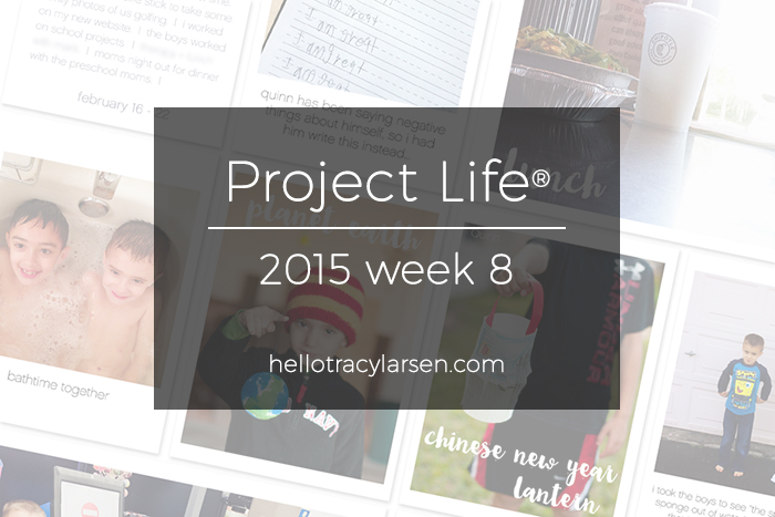 tracy larsen's digital project life® pages 2015 - week 8 ==> hellotracylarsen.com