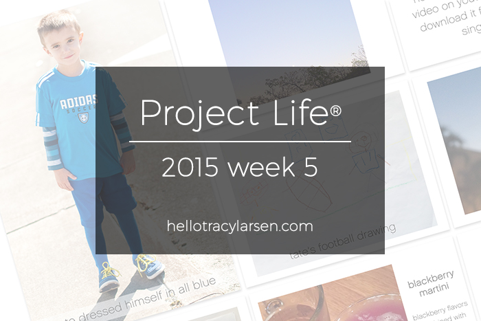 tracy larsen's digital project life pages 2015 - week 5 ==> hellotracylarsen.com