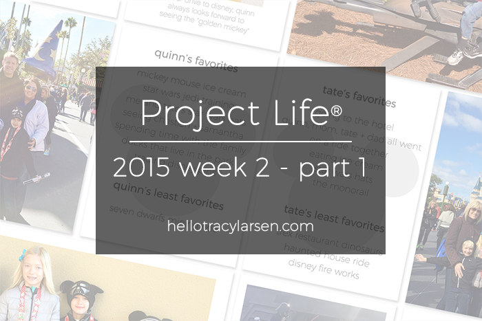 tracy larsen's project life pages 2015 ==> hellotracylarsen.com