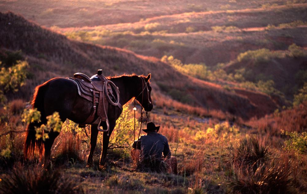 +A cowboys11043.jpg