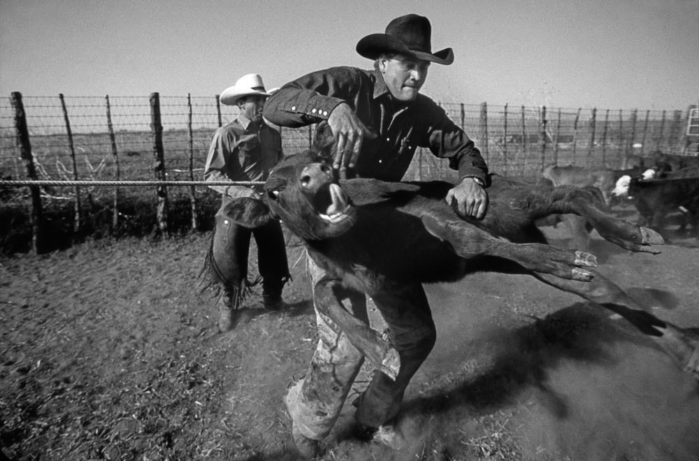cowboys11021bw.jpg