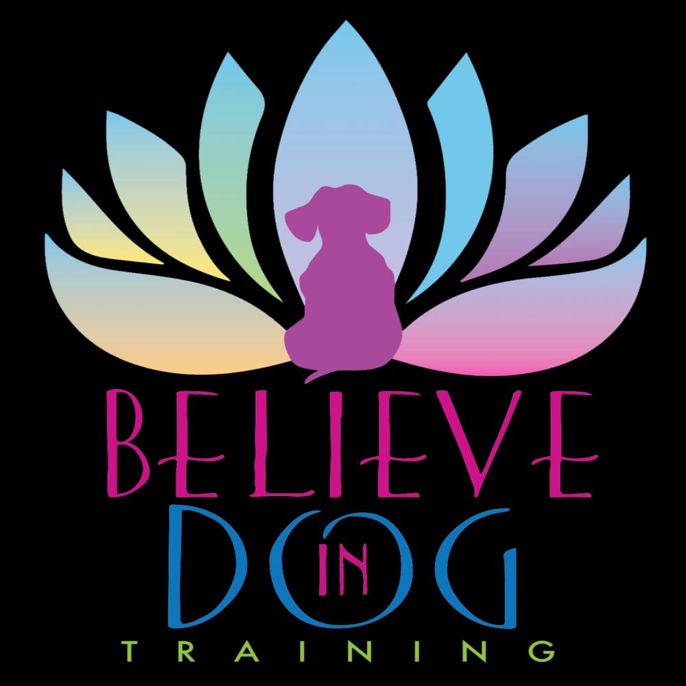 Believe In Dog Training