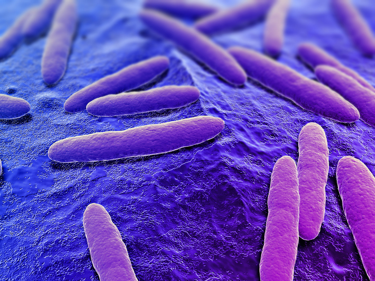 Irritable bowel Syndrome. Is bacterial overgrowth the missing link for treatment?
