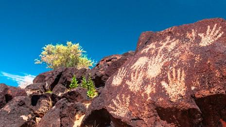 Petroglyph National Monument     —    230 Miles from Las Cruces