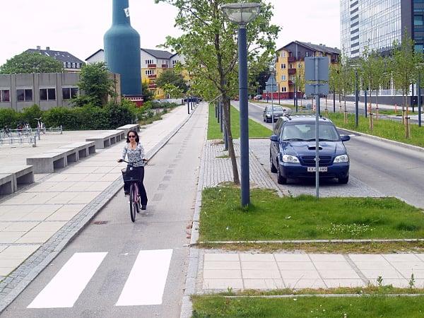GrassTrees-CopenhagenDenmark.jpg