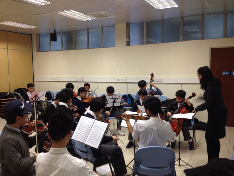 School Chamber Orchestra/Chamber music programmes