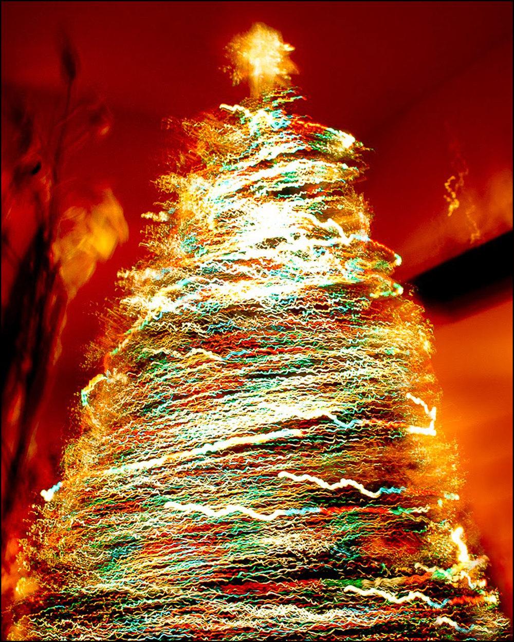 Christmas Tree by Jason Joseph