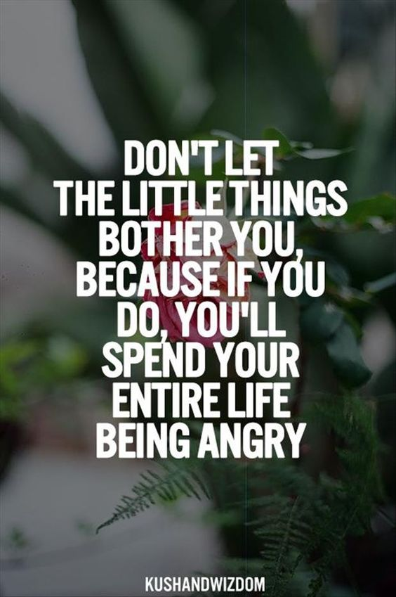 Don't let the little things bug you