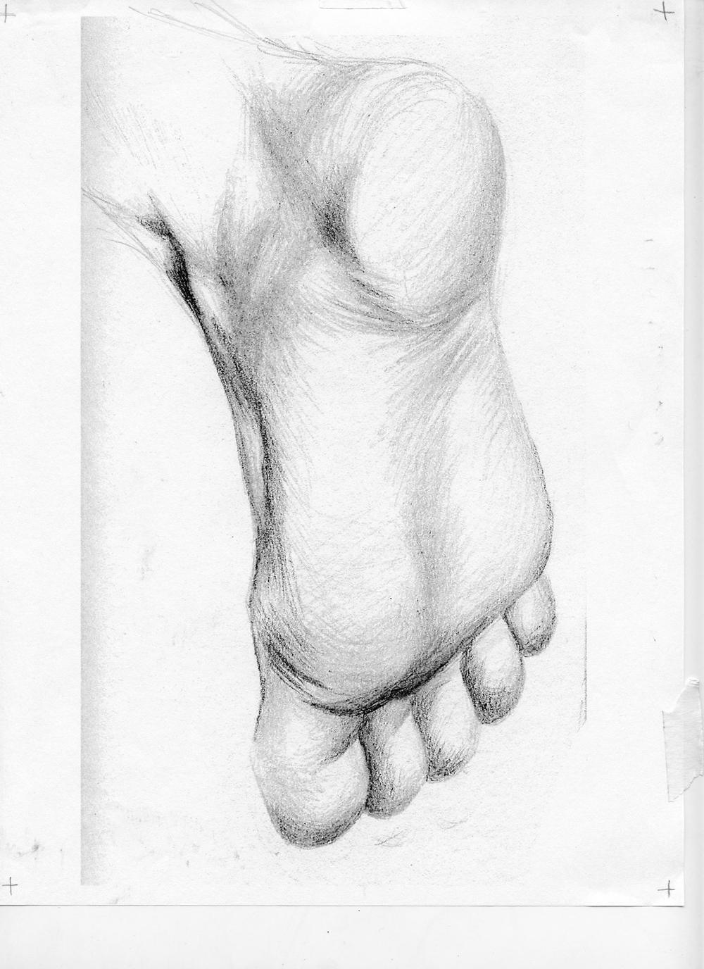 foot sketch.jpg