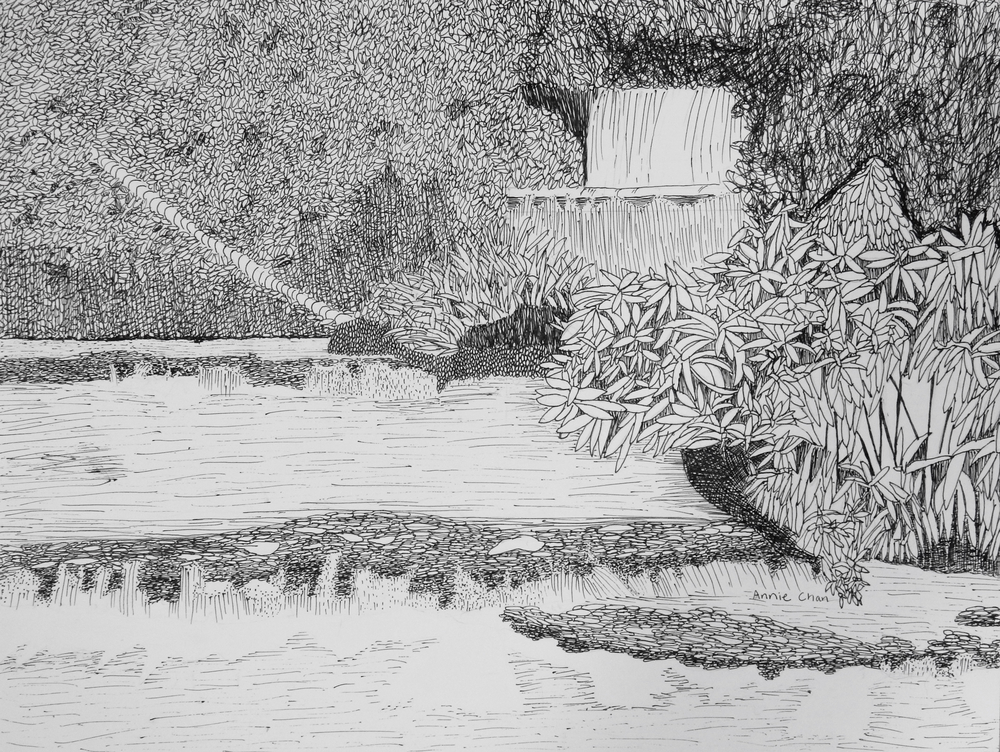AnnieChan.10yrs.Waterfall.pen&ink
