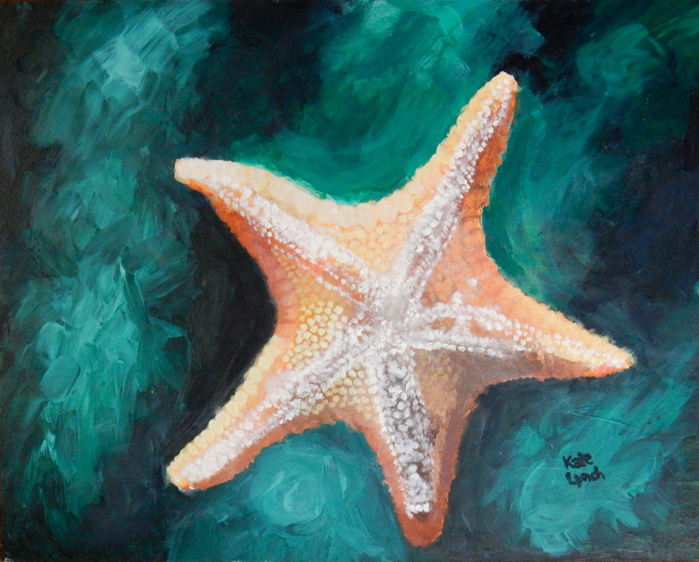 Kate Lynch.acrylic.Starfish