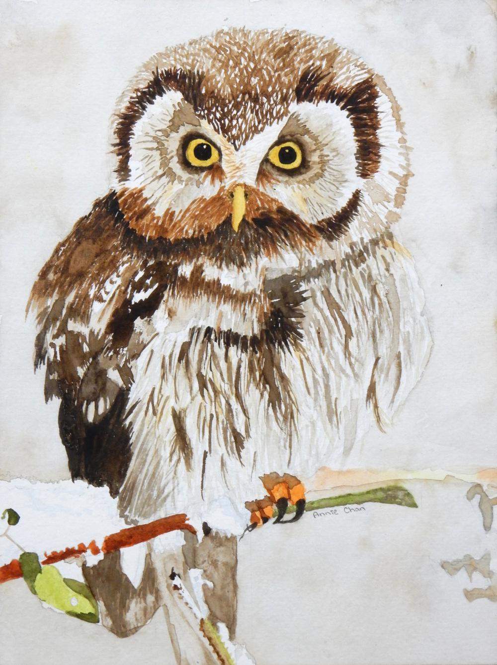 Annie Chan.11 yrs.watercolor