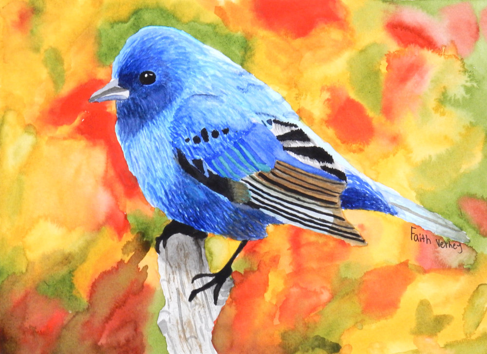 Faith Verney.11th grade.watercolor.Beauty in Blue