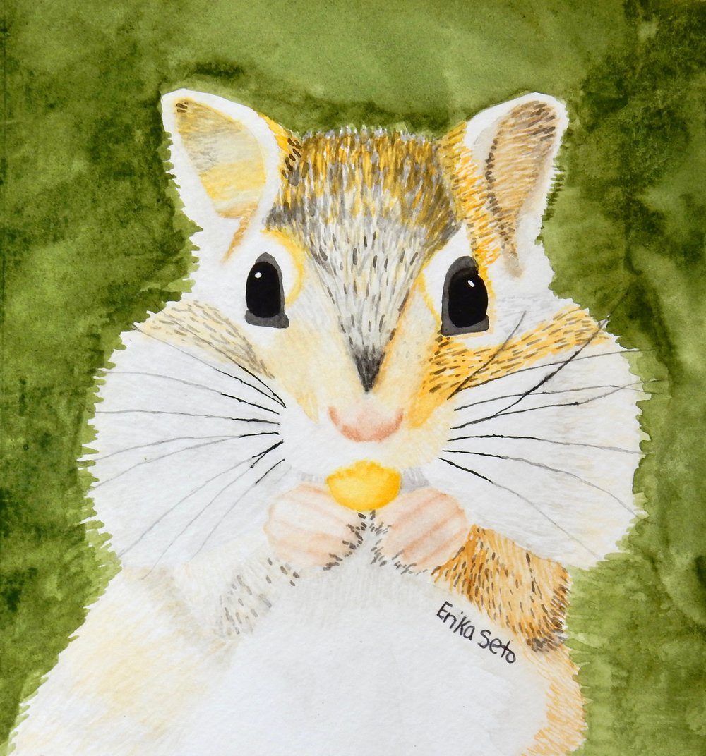 Erika Seto.Adult.watercolor