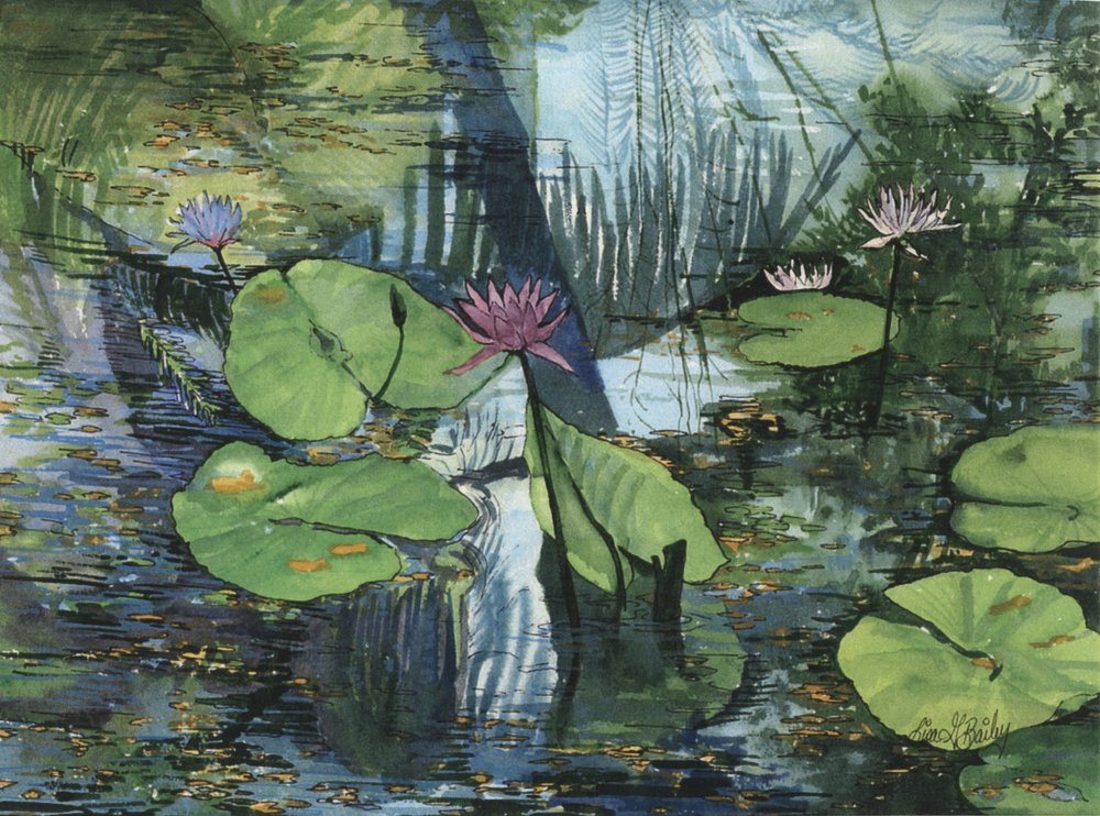 Reflections on the Lily Pad.watercolor by Lisa G Bailey
