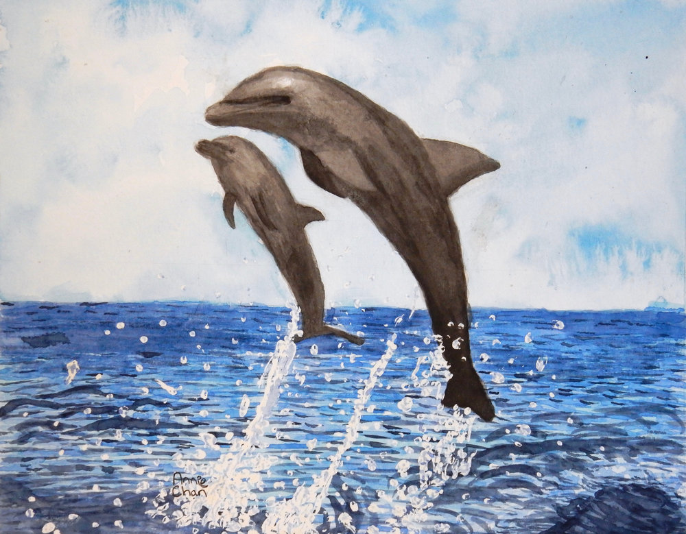 Annie Chan.6th grade.Dolphins.watercolor