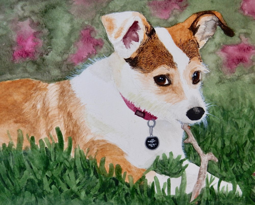 Emily Whalen.10th grade.Dog.watercolor
