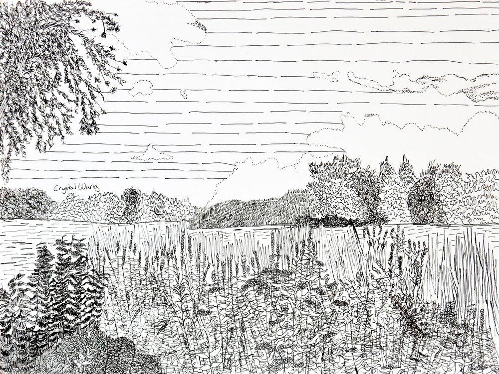 Crystal Wang.9 yrs.pen&ink.landscape
