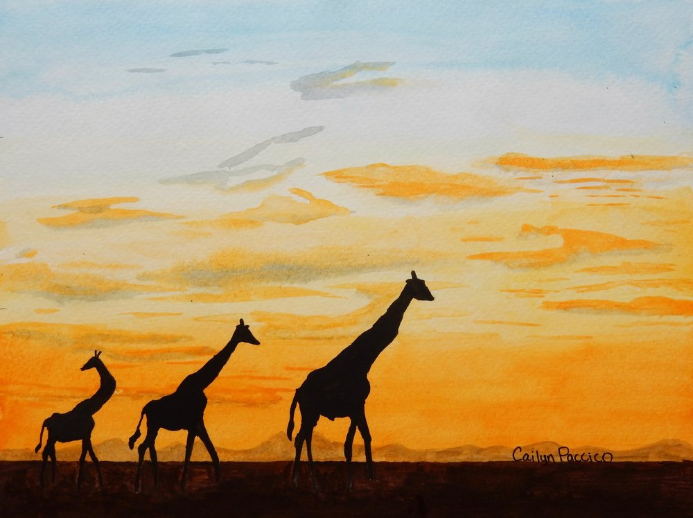 Cailyn Paccico.8th grade.watercolor.Giraffes in a Sunset