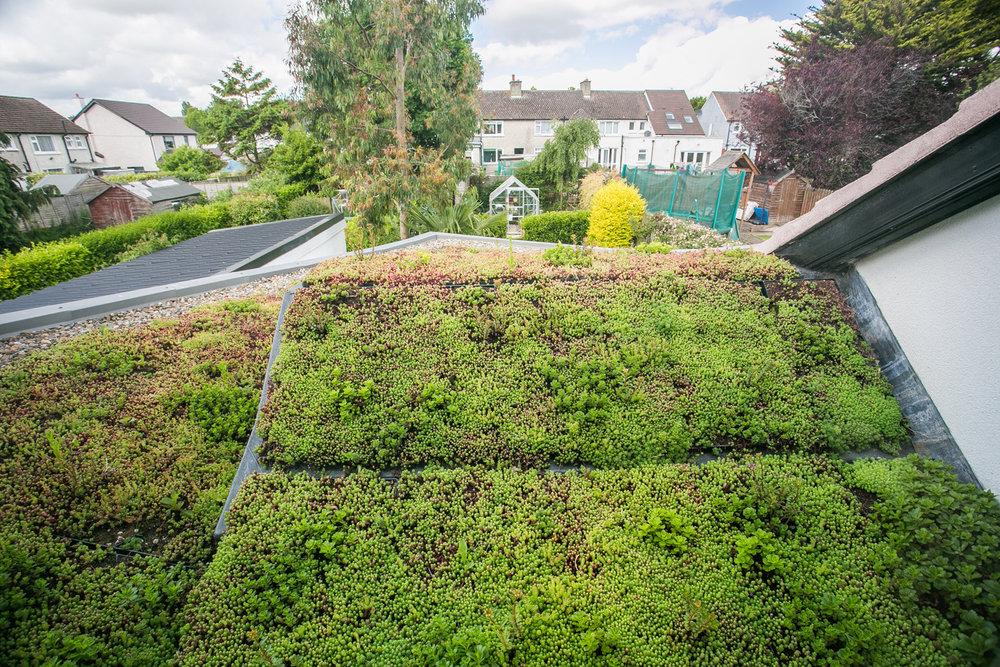 rooftop-garden-extension-raheny.jpg