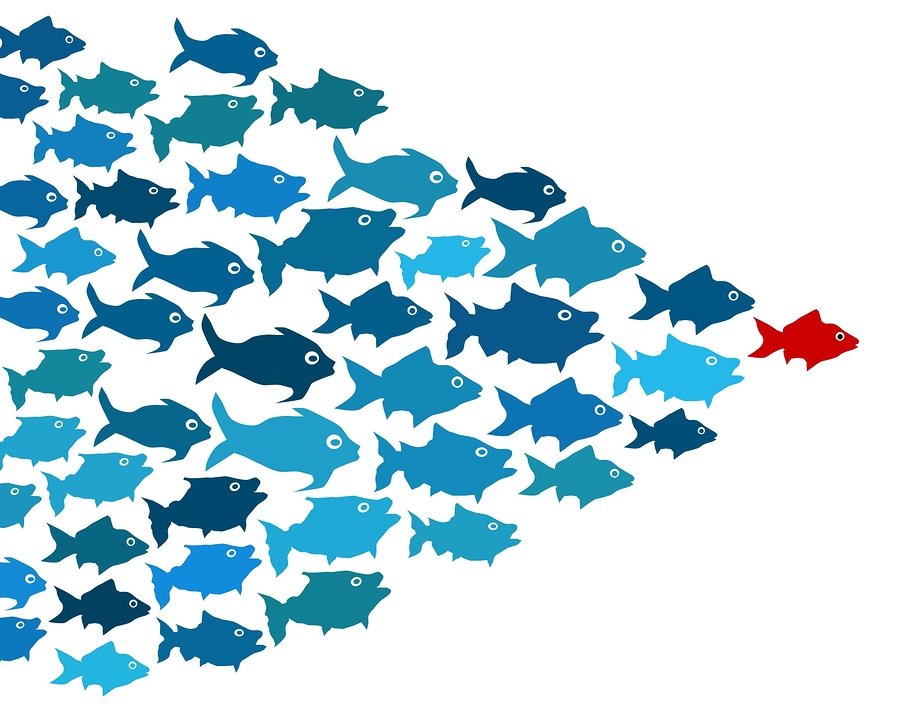 bigstock-Fishes-in-group-leadership-con-43450855.jpg