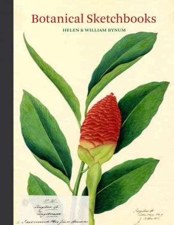 botanicalsketchcover-360x465.jpg